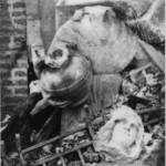Après les bombardements de 1944